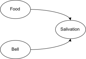 Dogs and Bells and NeuralNetworks